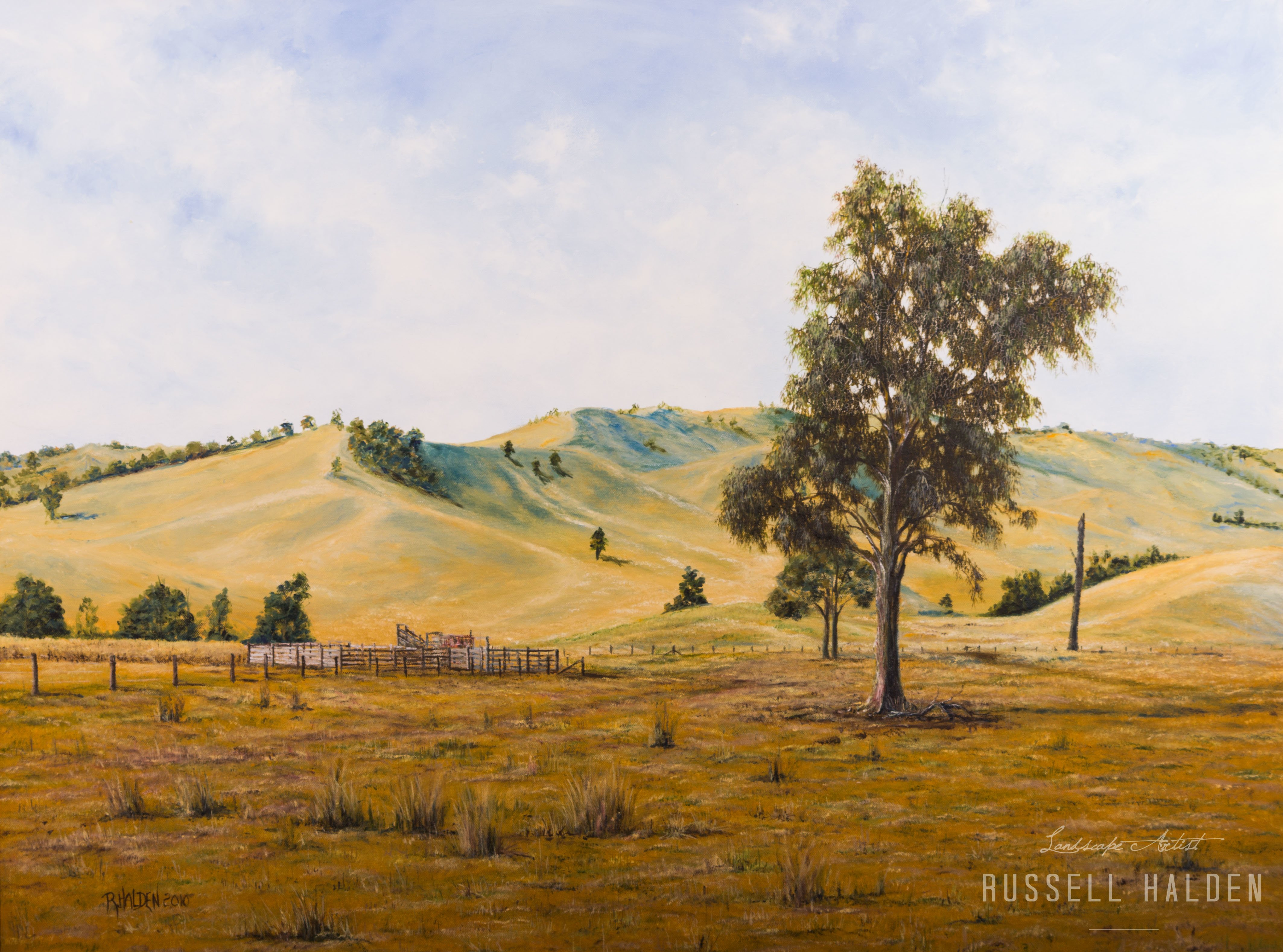 Near Mansfield - Victoria